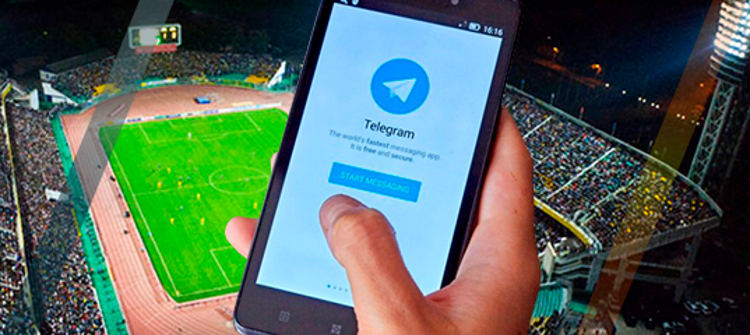 Лайв ставки в Телеграмме